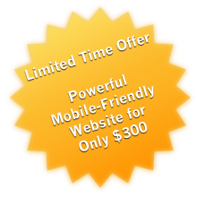 Powerful mobile-friendly website for only $300